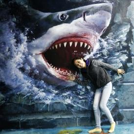 Aqua Zone - 3D Trick Art Museum